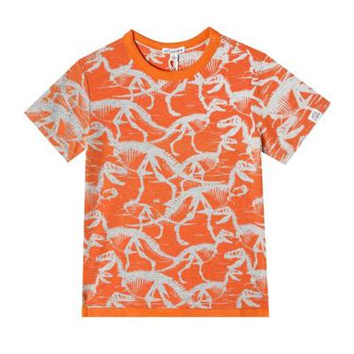 Dinosaur oliver shirt 1