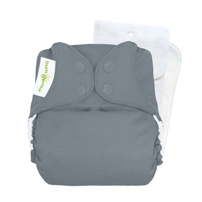 bumGenius Original Cloth Diaper 5.0 Armadillo 1
