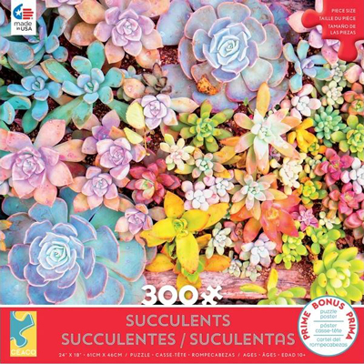 Succulents 3 - 300 piece puzzle 1