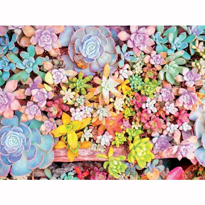 Succulents 3 - 300 piece puzzle 2