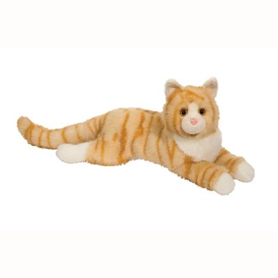 Oriole Orange Cat 1