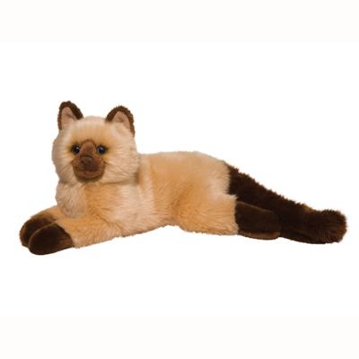 Sebastian Himalayan Cat 1