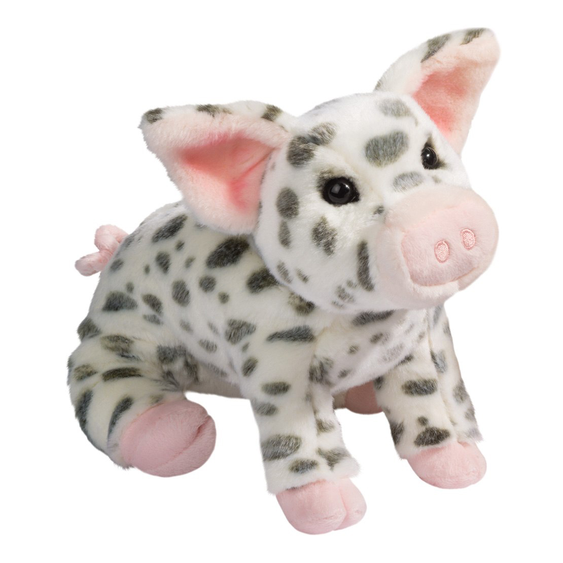 Pauline spotted pig (large) 1