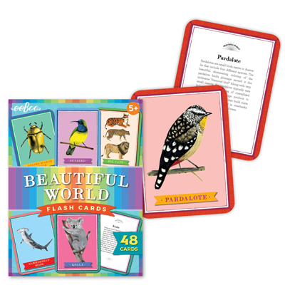Beautiful World flash cards 2