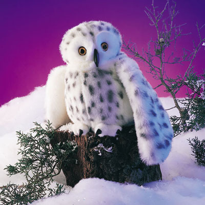 Snowy Owl puppet by Folkmanis 1