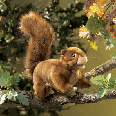 Red  Squirrel puppet by Folkmanis 1
