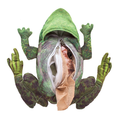 Frog life cycle puppet 2