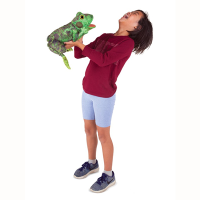 Frog life cycle puppet 3