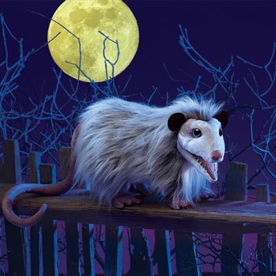 Opossum puppet 1