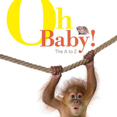 Oh Baby! The A-Z of baby animals 1