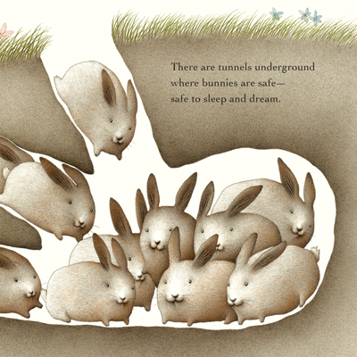 Bunny Dreams 2