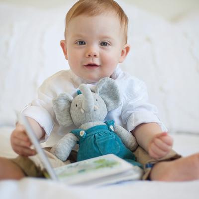 Alvin the Elephant toy 2
