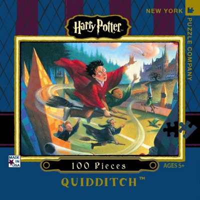Quidditch - 100 piece mini puzzle 1