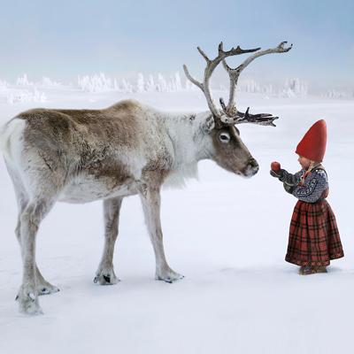 The Reindeer Wish 1