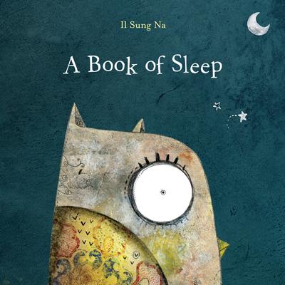 A Book of Sleep 1