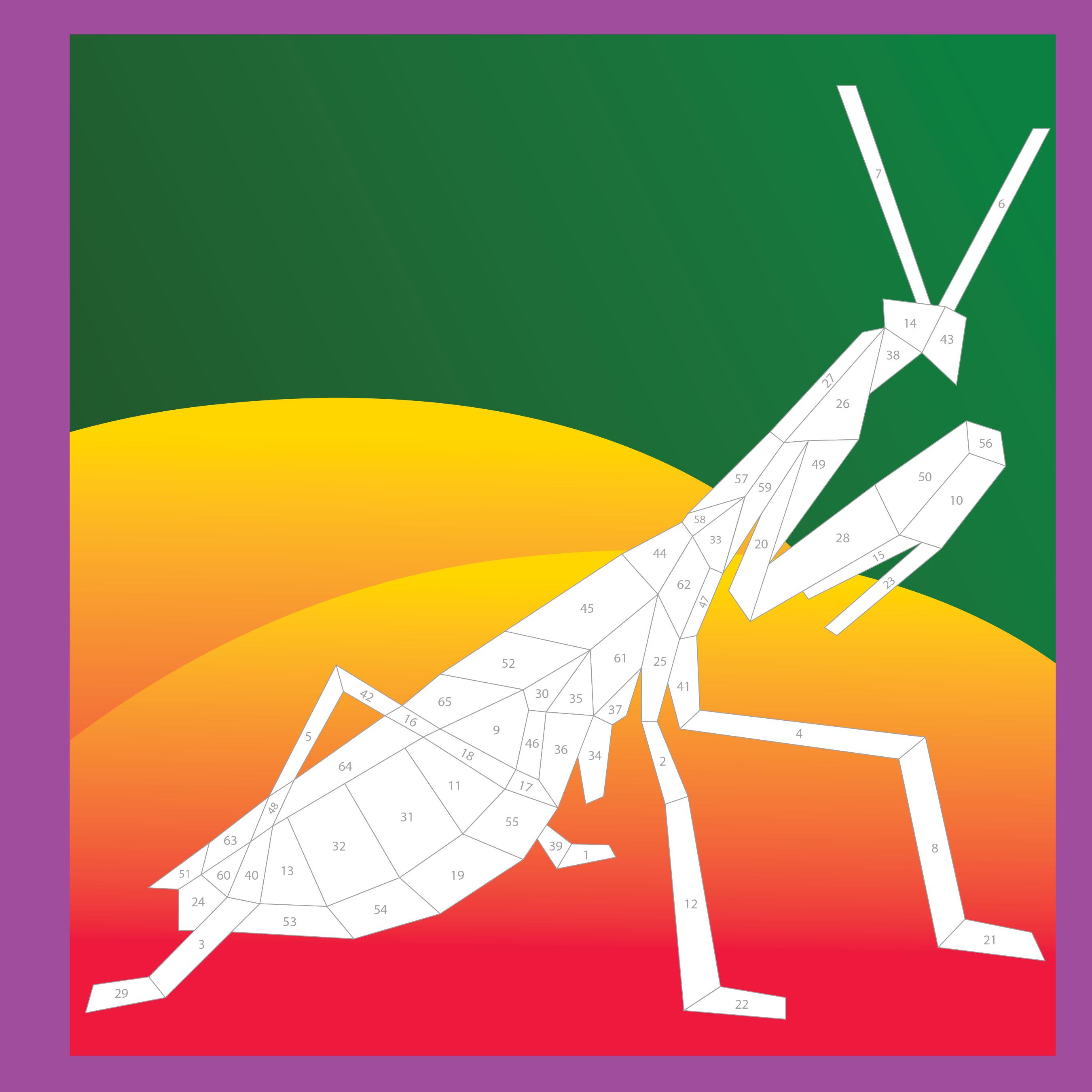 Paint by Sticker - Beautiful Bugs 1